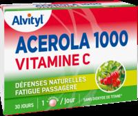 Govital Acerola 1000 à SAINT-PRIEST