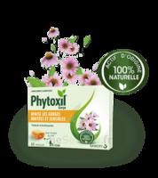 Phytoxil Pastilles Gorge Pastilles Adulte Enfant +12 Ans B/20