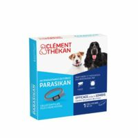 Parasikan Collier Chien B/1
