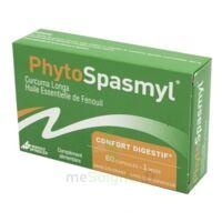 Phytospasmyl Caps B/60 à SAINT-PRIEST