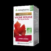 Arkogélules Vigne Rouge Bio Gélules Fl/45 à SAINT-PRIEST