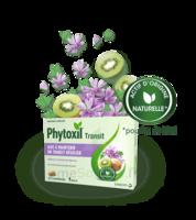 Phytoxil Transit Comprimés B/20 à SAINT-PRIEST