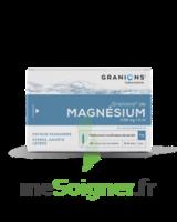 Granions De Magnesium 3,82 Mg/2 Ml S Buv 30amp/2ml à SAINT-PRIEST