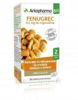Arkogélules Fenugrec Bio Gélules Fl/40 à SAINT-PRIEST