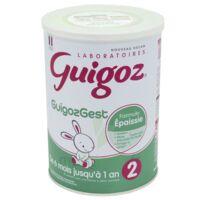 Guigoz Guigozgest 2 Lait poudre B/800g à SAINT-PRIEST