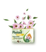 Phytoxil Gorge & Défenses Naturelles Pastilles B/20 à SAINT-PRIEST
