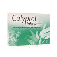 Calyptol Inhalant, émulsion Pour Inhalation Par Fumigation à SAINT-PRIEST