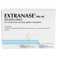 Extranase 900 Nk, Comprimé Enrobé Gastro-résistant à SAINT-PRIEST