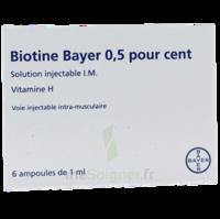 Biotine Bayer 0,5 Pour Cent, Solution Injectable I.m. à SAINT-PRIEST
