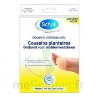 Scholl Coussin Plantaire Douleurs Métatarsales T2 à SAINT-PRIEST