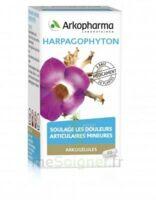 Arkogelules Harpagophyton Gélules Fl/45 à SAINT-PRIEST