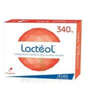 Lacteol 340 Mg, 10 Gélules à SAINT-PRIEST