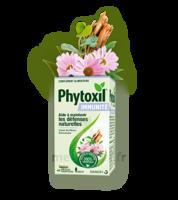 Phytoxil Immunité Gélules B/40 à SAINT-PRIEST