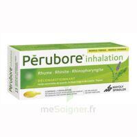 Perubore Caps Inhalation Par Vapeur Inhalation Plq/15 à SAINT-PRIEST