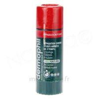 Dermophil Indien Réparation Forte Lèvres 4 g à SAINT-PRIEST