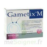 Gametix M, Bt 30 à SAINT-PRIEST
