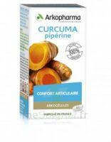 Arkogelules Curcuma Pipérine Gélules Fl/45 à SAINT-PRIEST