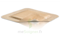 Mepilex Border Pansement hydrocellulaire stérile 10x30cm B/10 à SAINT-PRIEST