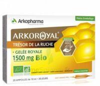 Arkoroyal Gelée royale bio 1500 mg Solution buvable 20 Ampoules/10ml à SAINT-PRIEST