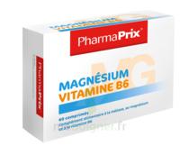 Magnésium Vitamine B6 à SAINT-PRIEST