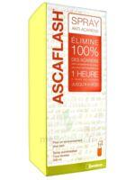 Ascaflash Spray anti-acariens 500ml à SAINT-PRIEST