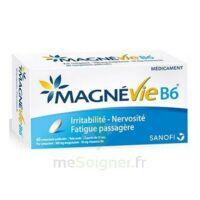 Magnevie B6 100 Mg/10 Mg Comprimés Pelliculés Plaq/60 à SAINT-PRIEST