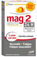 Mag 2 24h Comprimes B/45+15 Offert à SAINT-PRIEST