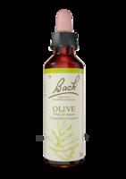 Fleurs De Bach® Original Olive - 20 Ml à SAINT-PRIEST