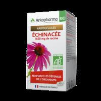 ARKOGELULES Echinacée Bio Gélules Fl/45 à SAINT-PRIEST