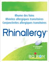 Boiron Rhinallergy Comprimés B/40 à SAINT-PRIEST