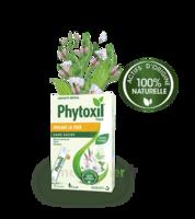 Phytoxil Toux Sans Sucre Sirop Adulte Enfant +6 Ans 12 Sachets/10ml à SAINT-PRIEST