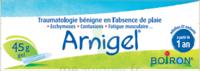 Boiron Arnigel Gel T/45g à SAINT-PRIEST